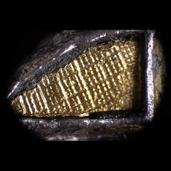 Micro Fotografia