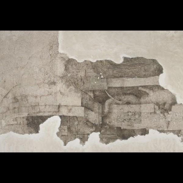 Monocromo di Leonardo - Sala delle Asse